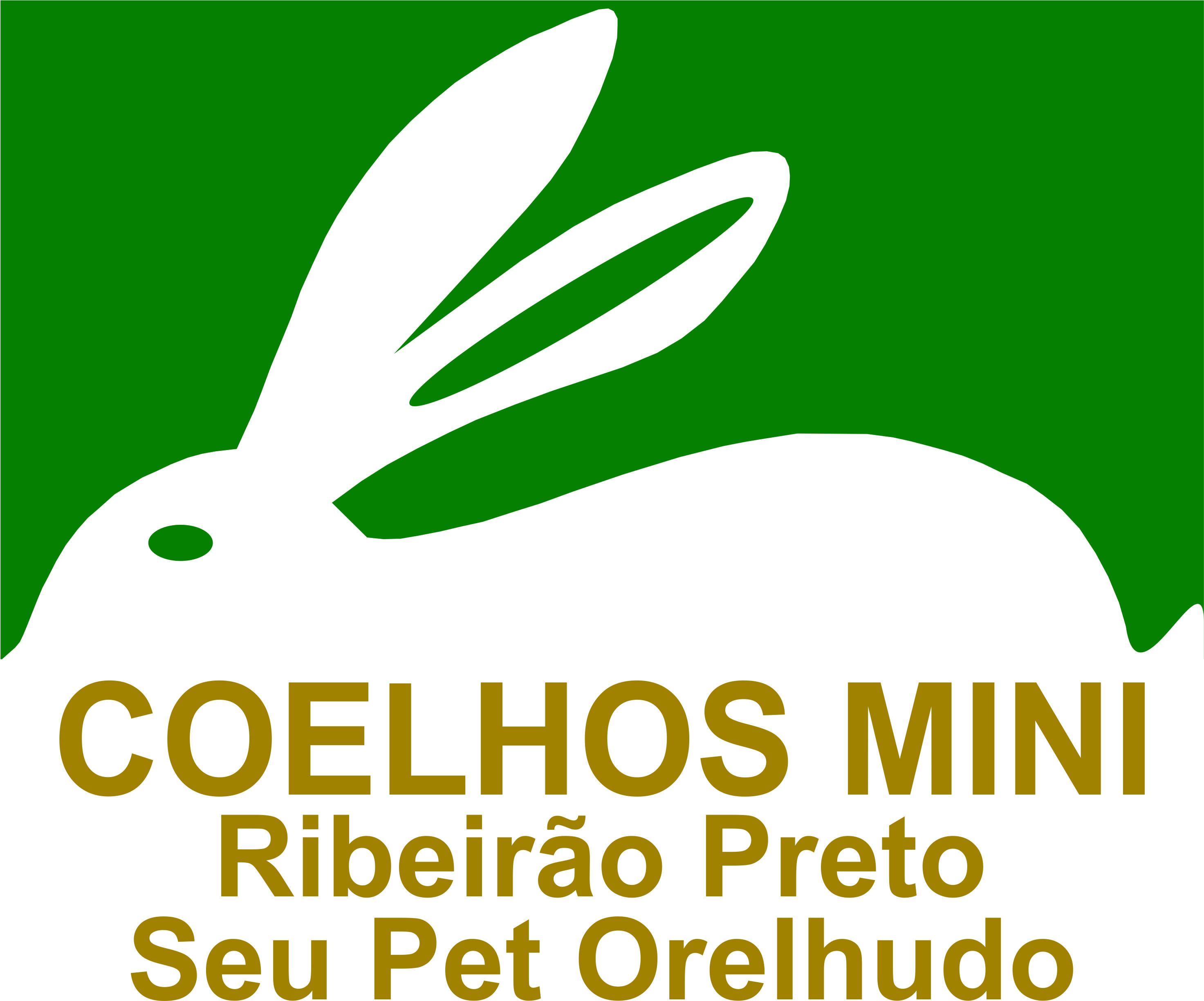 Coelhos Mini Ribeirão Preto