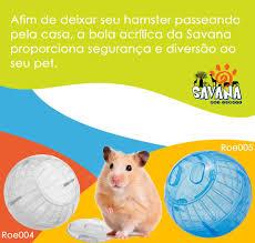 Hamster Ball globinho