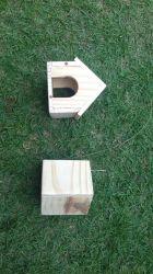 Casinha para Hamster / Topolino / Camundongo